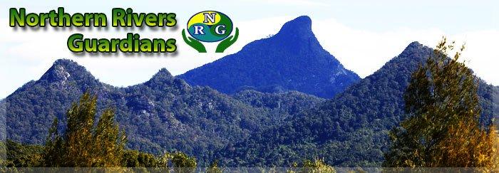 NRG-header
